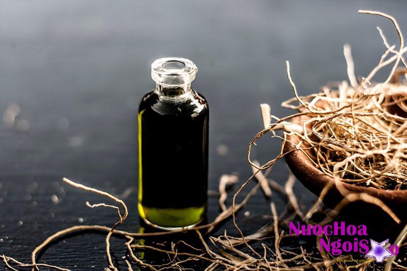 Tinh dầu hương bài được chưng cất từ rễ của hương bài.