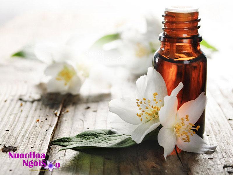 Hoa lài có mùi thơm quyến rũ, vì vậy các chuyên gia sáng tạo mỹ phẩm đã vận dụng mùi thơm đặc biệt này để sản xuất nước hoa