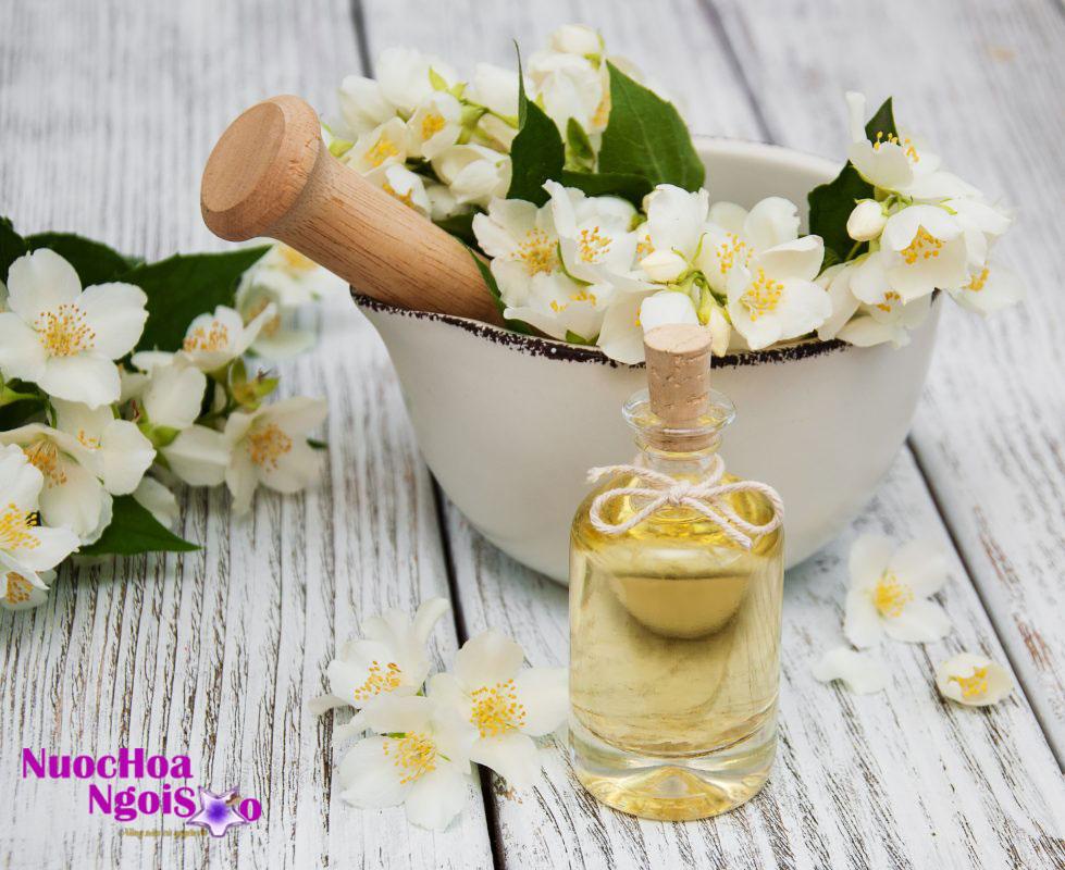 Để cho ra sản phẩm chất lượng, người ta lựa chọn những bông hoa nhài có màu trắng tinh khiết