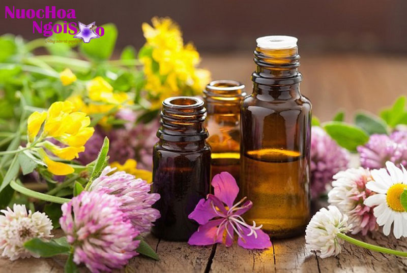 Tinh dầu đàn hương và ngành công nghiệp mỹ phẩm