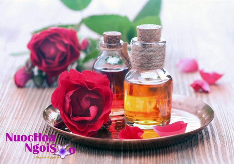 Tinh dầu chiết xuất từ hoa hồng có rất nhiều hữu ích cho sức khỏe.