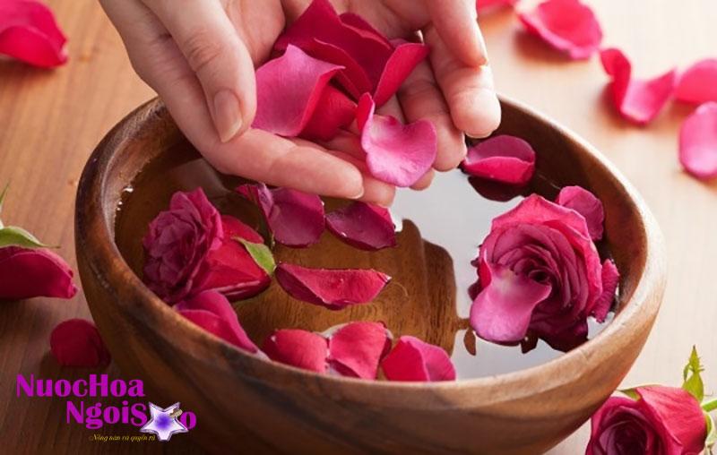 Tinh dầu chiết xuất hoàn toàn từ cánh hoa hồng.