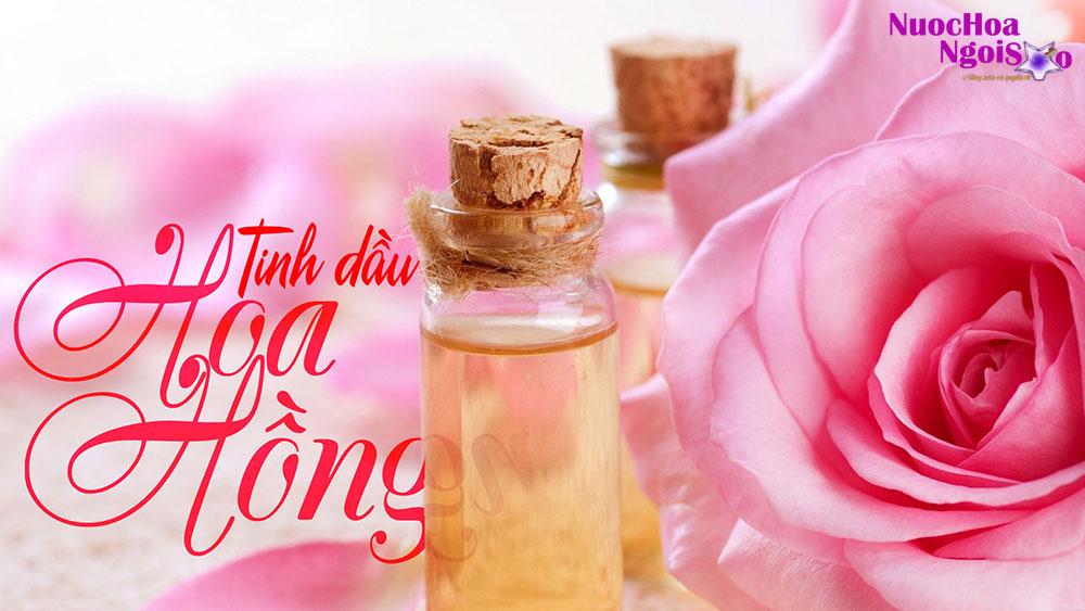 Tinh dầu hoa hồng được chiết xuất từ cánh hoa