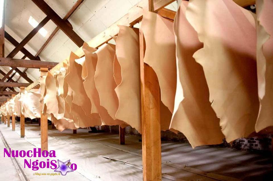 Hương da thuộc trong ngành sản xuất nước hoa