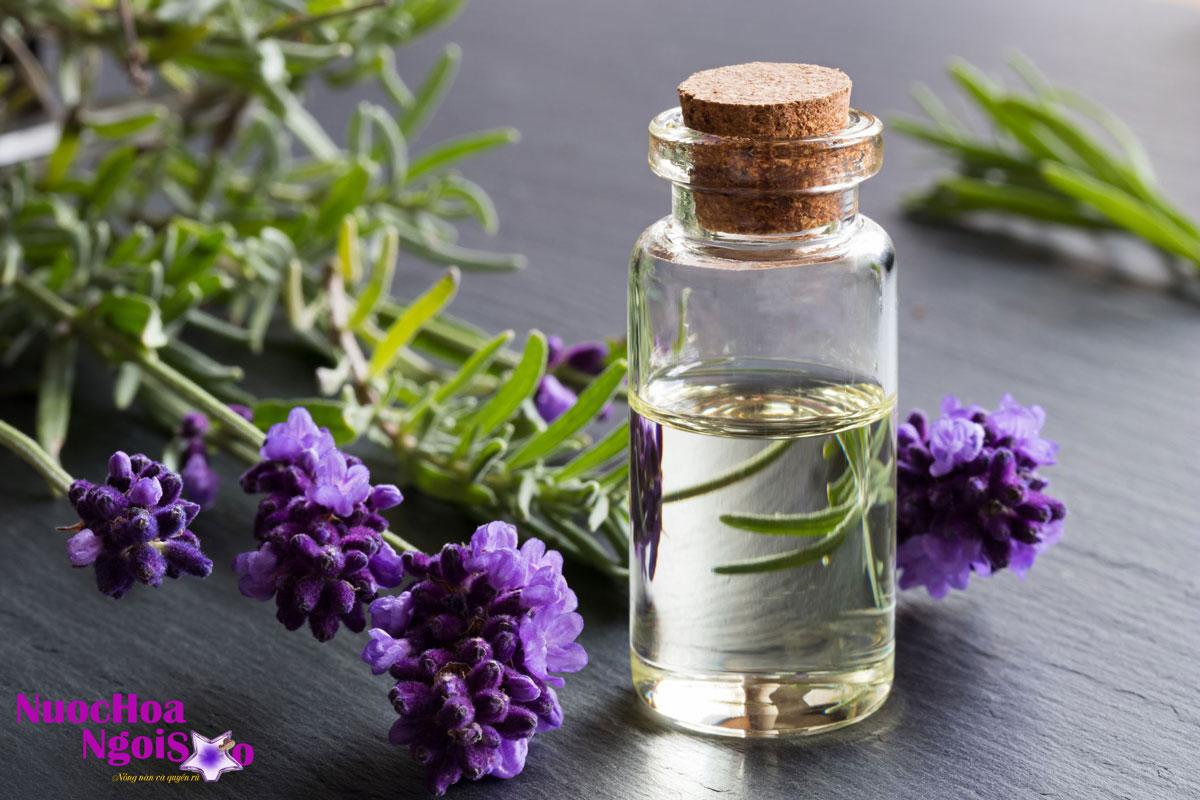 Tinh dầu oải hương có tác dụng như một loại thuốc an thần nên oải hương thường được dùng làm trà chữa trị bệnh đau đầu, suy nhược, cảm nắng.