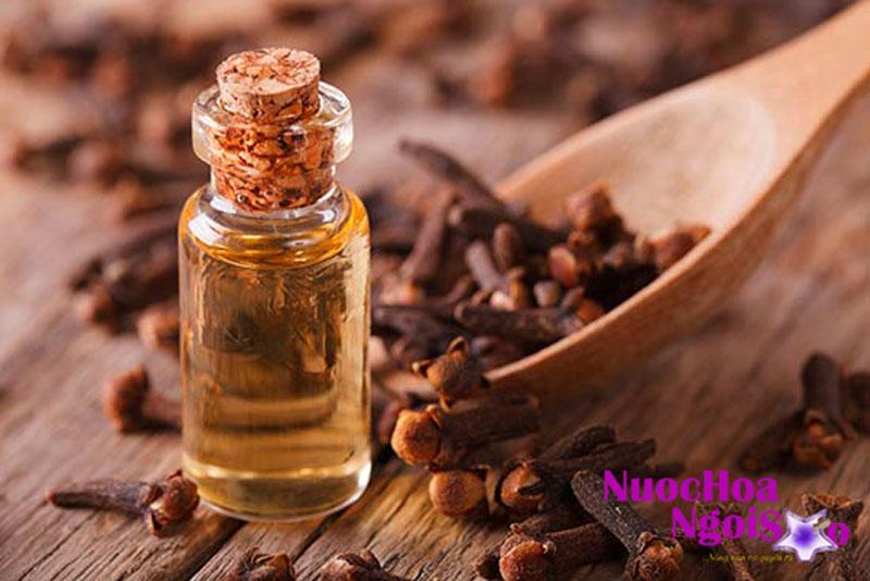 Nụ hoa đinh hương dùng làm nguyên liệu cất tinh dầu dùng trong nha khoa làm thuốc tê và diệt tủy răng, làm thuốc sát khuẩn và diệt sâu răng…