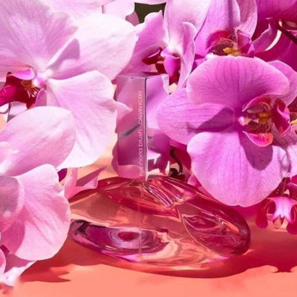 Nước hoa nữ CK Euphoria Blush - Nước hoa chính hãng